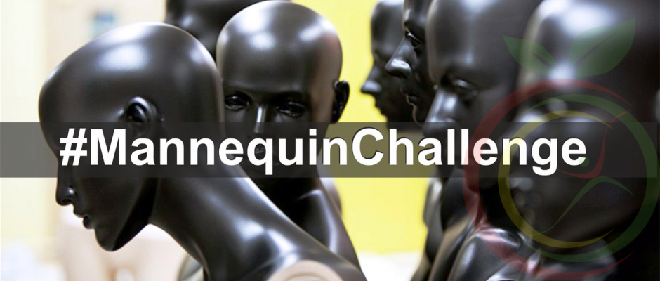 """Mannequin Challenge в реабилитационном центре """"Мой Выбор"""""""